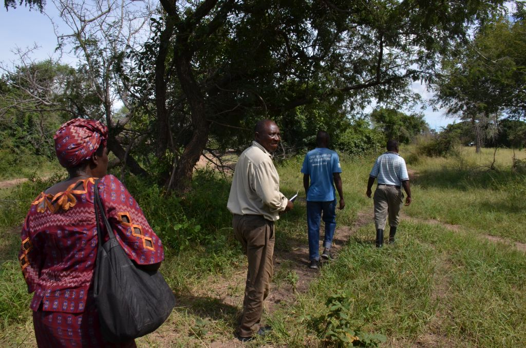 Searching for the old Baambwe site