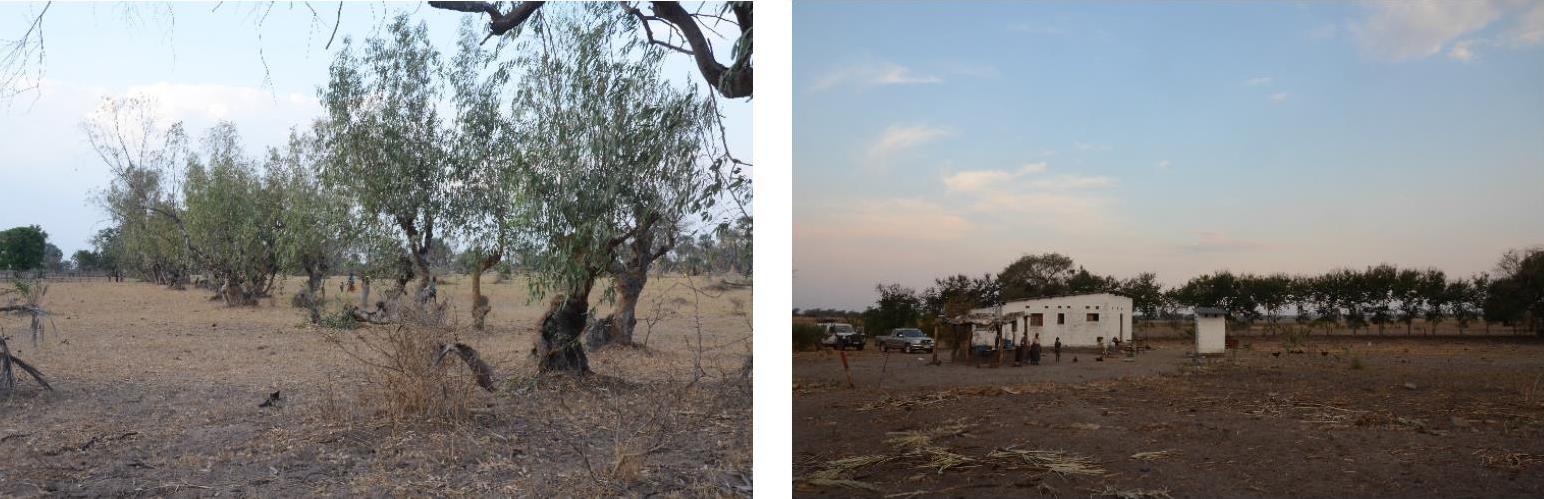 namwala-visit-november-2014-03-kasenga-mission-ibamba